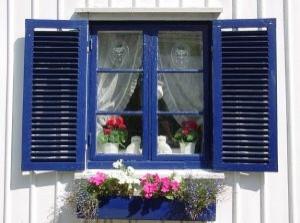 bois-fenetre-bleue-avec-des-fleurs_21069100